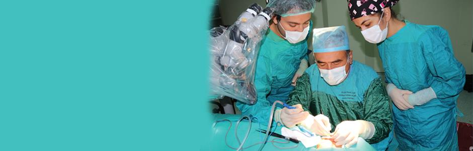SURGICAL MEDICAL SCIENCES